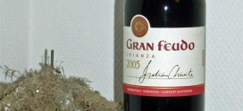 Julian Chivite Bodegas – Gran Feudo Crianza 2005