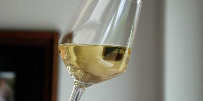Dejlig frisk hvidvin fra Fritsch