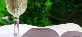 Hvilke vinblogs er værd at læse?