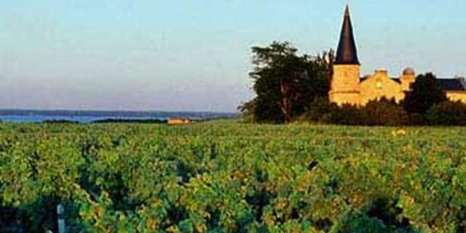 Børn fra 6 år skal oplæres om vin i Bordeaux