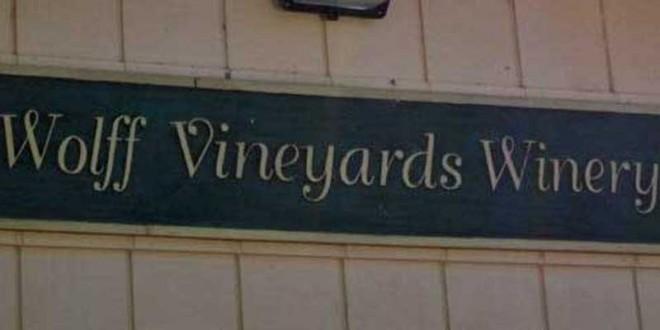Super drue høst hos de Californiske vinproducenter