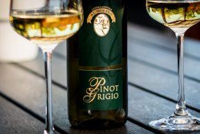 Al Molino Pinot Grigio Vallagarina 2013