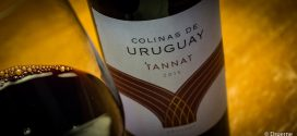 Mørk som natten: Colinas de Uruguay – Tannat 2015