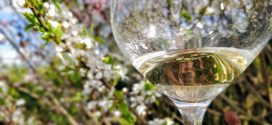 Pinot Gris fra Alcase – vi tester Horcher