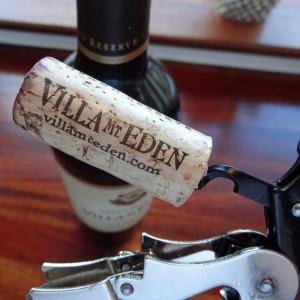 VillaEden3