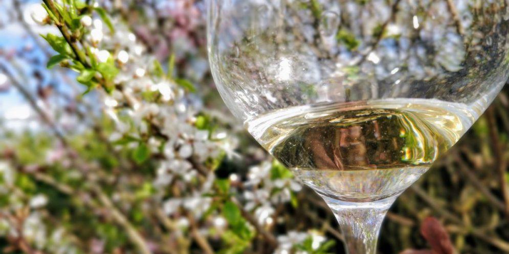 Horcher Pinot Gris